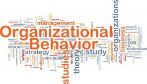gambar Pelatihan Understanding & Managing Organizational Behavior